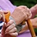 pensionet-rriten-n-euml-140-euro_hd