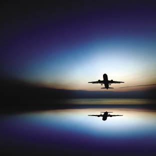 shuterstock fluturim a_opt