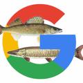 Google Pixel-2017Muskie-Walleye
