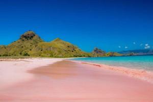 Pink Beach - Komodo Island, Indonesia